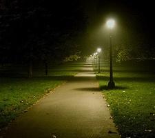 Porto Corrida do Parque à Noite